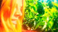 Instagram: Stana Katic apresenta o seu pomar