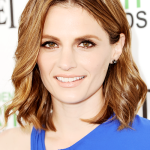 Stana fala com fãs na entrada do Independent Film Spirit Awards 2014